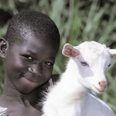 Goat235X235